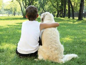 resguardo para perros